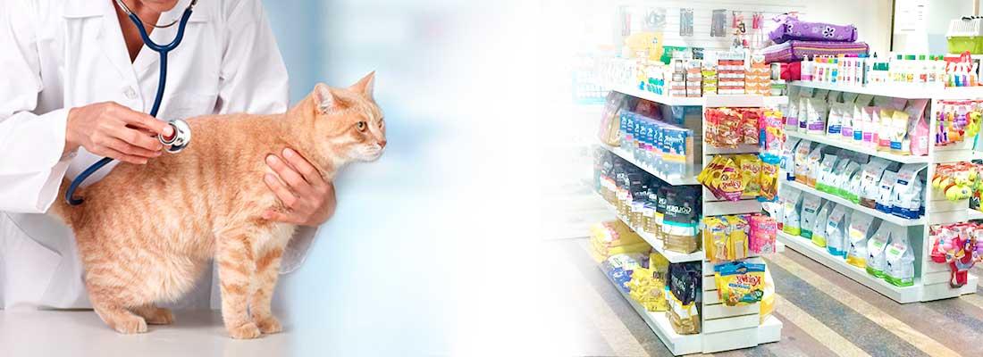 Seguro para Clínicas Veterinárias e Petshops